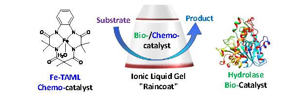 Molecular raincoats abstract figure 1
