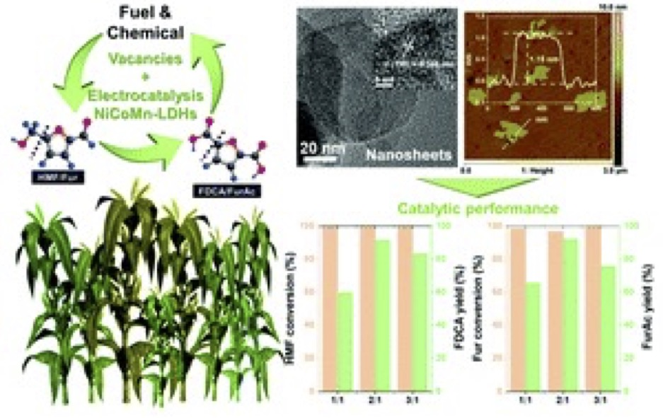 Electrochemical upgrading of biomass-derived 5-hydroxymethylfurfural and furfural over oxygen vacancy-rich NiCoMn-layered double hydroxides nanosheets